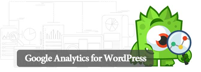 12-google-analytics-wordpress-plugin