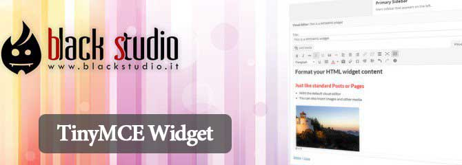 22-tinymce-widget-plugin