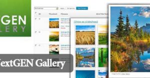 4-nextgen-gallery-plugin