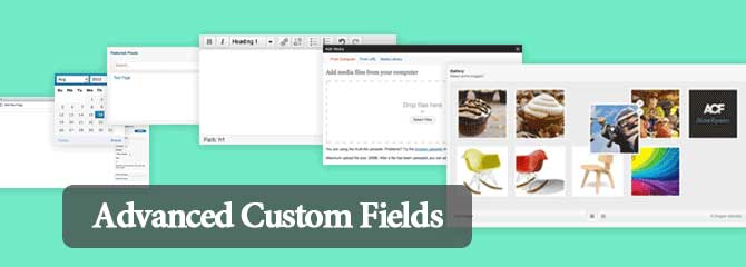 7-advanced-custom-fields-plugin