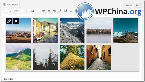 WordPress 3.9 相册预览