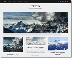 triton-lite-free-wordpress-theme
