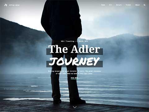 adler-theme-1