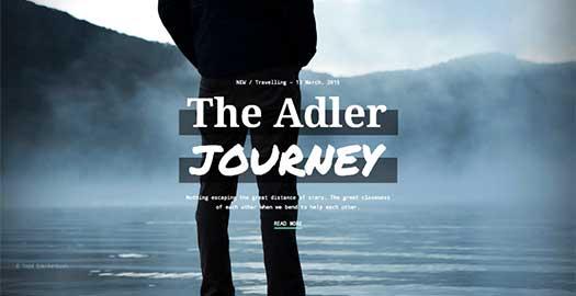 adler-theme-feature