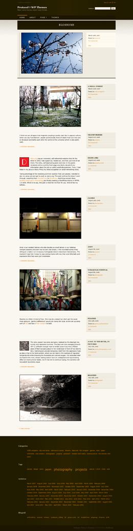 WordPress主题图片
