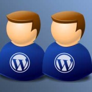 wordpress-role