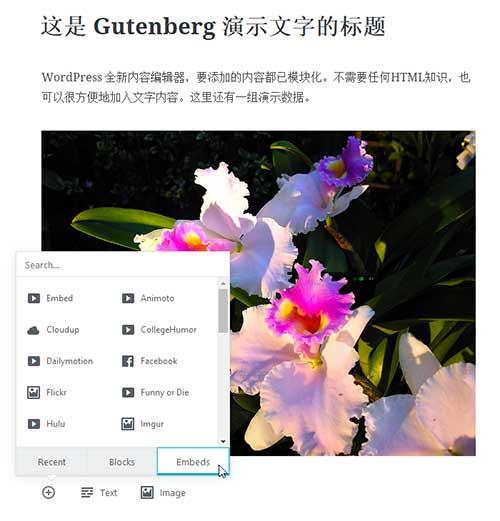 wp-new-editor-gutenberg-screenshot-02