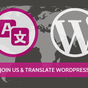wp-translator-day